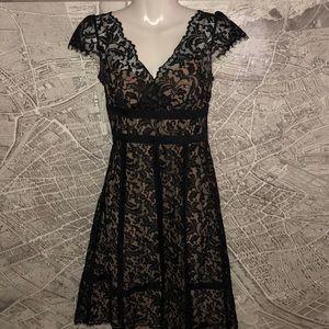 Loft Ann Taylor lance black dress size 6P